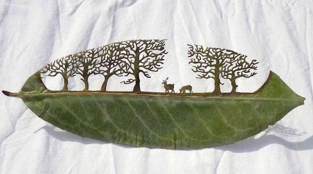 siapa neh yg bisa bwt daun yg sperti ini ?? :) yg suka jgn lupa blang wow ......