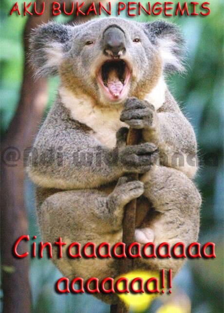 Aku bukan Pengemis Cintaaaaaaaaaaaaaaaaaaaaaaaaaaaa !!