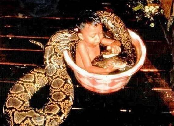wah nih anak brani banget mandiin ular jgn lupa friends WOW nya