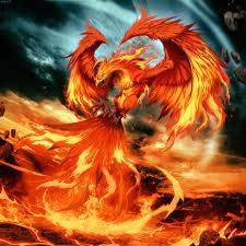 phoenix bird wow