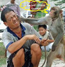 Gua Majikan lo sia(manusia) Lu kalo Macem2 sama gua, gua tempeleng kaya gini NGERTI!!!, Iya Boss monyet!