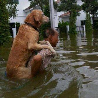 Hmmm... unik di saat bencana banjir
