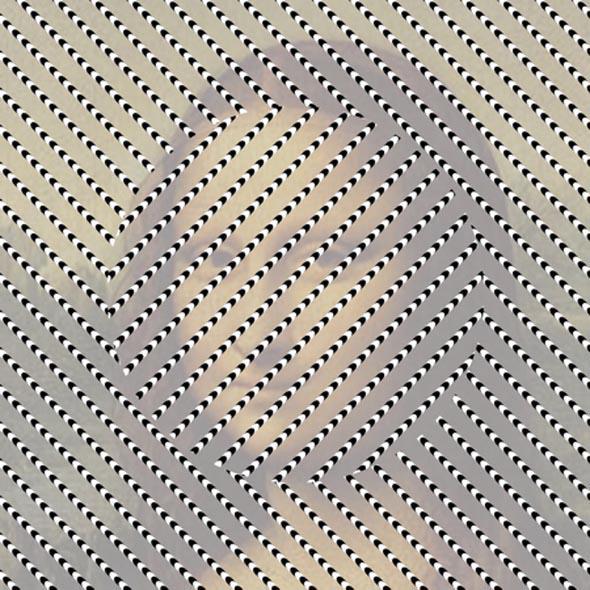 Optical Illusion monalisa