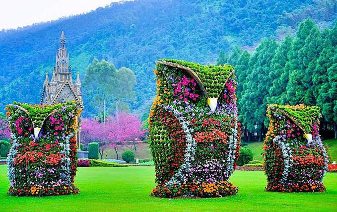Burung hantu terbuat dari tumpukan bunga hidup, cantik banget ya warna dan bentuknya. Taman indah ini hanya ada di Taiwan.