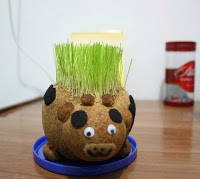 BONEKA POTTY Boneka Potty adalah pot tanaman berbentuk boneka yang dapat ditanami beraneka macam tanaman hias mini, benih sayuran dan bunga-bungaan. Boneka dikemas secara menarik berbentuk beraneka macam binatang sehingga disukai anak-anak.