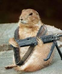 wow hamster ternyata bisa juga nembak musuhnya pake senjatanya sendiri