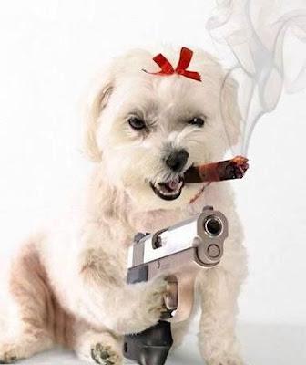 Gk klick WOW gw tembak loe! wkwk.. :D