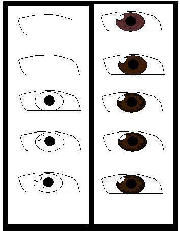 beneran cara menggambar mata di komputer