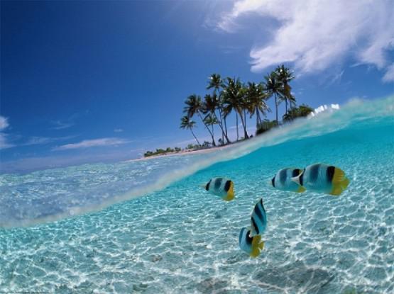 pulsker! liat nih lautnya, indah bngt kan, ini ada di indonesia lho.. bangga deh jadi anak Indonesia! Nice Great!!