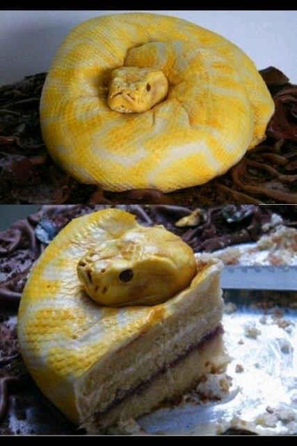 Kalo liat ular ini pada takut gak ya?? ^_^
