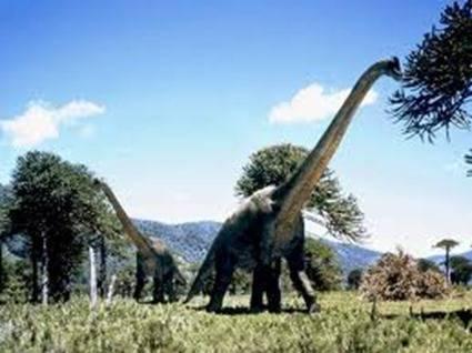 mIni Bukti Dinosaurus Punah Sebab Asteroid. Masih Inget Kan penyebab kepunahan dinosaurus adalah hantaman asteroid. Para geolog Telah menganalisis kawah tumbukan di dekat kota Chicxulub, Meksiko Yang Lebarnya 180 km. Hantaman asteroid seukuran