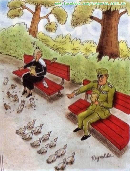 Perbedaan Prajurit Nenek Ketika Memberi Makan Ayam Inilah Gambar Kartun