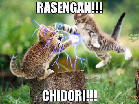 Kucing juga kayak naruto bisa rasengan dan chidori WOW-nya