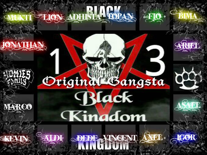 Black Kingdom 13 Adalah organisasi yang di buat pada tahun 2012 yang di ketuai oleh Arya Gemilang Bima Sakti.