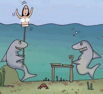 ahahah nice funny trick ahaha smart sharks