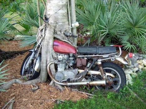 Ini Gan motor yg diparkin sejak tahun 1985!!! ssstt siapa yg bs ambil neh...