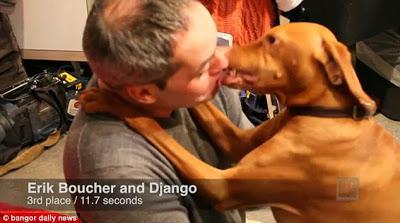 Waduh, Amerika Selenggarakan Kontes Berciuman dengan Anjing!