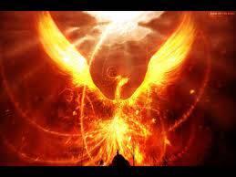 phoenix adalah makluk yg luar biasah makluk ini penuh cahaya api
