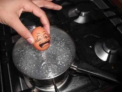Lebih Baik telur di goreng dari pada di rebus Haaay Yang Liat Wow nYa maana Yaa