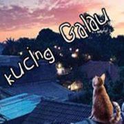 kucing lagi galau nih jangan diganngu ya sob...