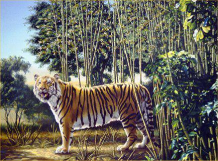 uji konsentrasi kamu yuk! Coba cari tulisan The Hidden Tiger pd gambar ini:
