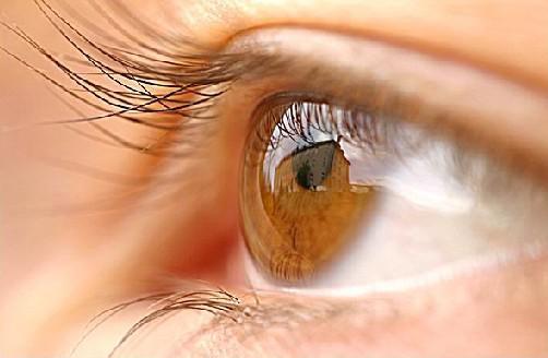 10 Fakta Keunikan Mata Manusia