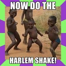 Ini Dia Harlem Shake versi anak2 Afrika Hahahaha Jangan Lupa WOW nya ya.....