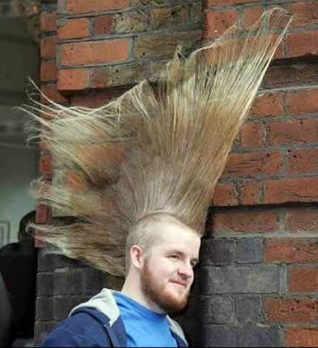 Ini baru anak PUNK !! /m\ Jangan ngaku anak Punk kalo belum punya style rambut kaya gni :P Haha, .. LOL