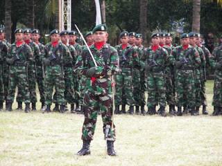 Kostrad Tontaipur Peleton Intai Tempur (Tontaipur) merupakan satuan elite Kostrad terbaru,97 pasukan yang diseleksi dari Brigade Infantri 9 dan Brigade Infantri 13 Kostrad menjadi prajurit-prajurit pertama satuan elite ini.