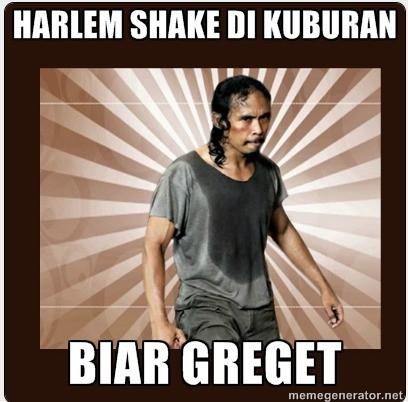 wow!!! siapa yg udh tau harlem shake????