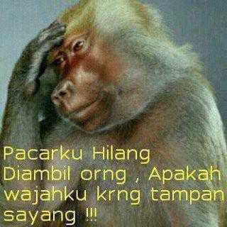 monyet lagi galau...................mana wownya