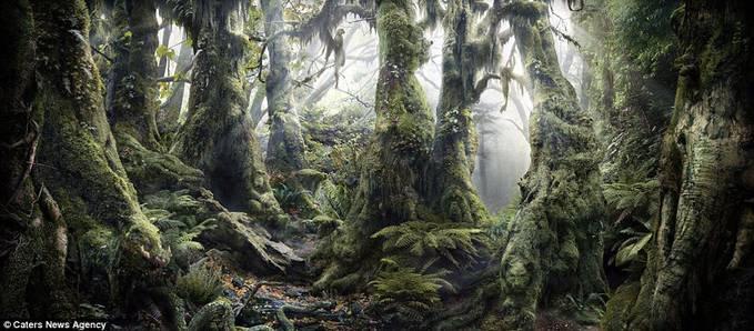 tatap gambar ini...... carilah..carilah...carilah gambar hewan diantara tumbuhan ini