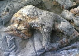 ini lah anak durhaka yg dikutuk menjadi batu karena durhaka pada ibunya siapakah dia ?? WOW