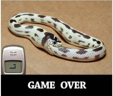 Permainan ular selesai :D xD