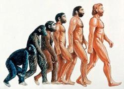kebohongan teori evolusi