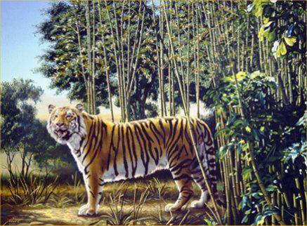 cari letak tulisan hidden tiger,bagi yang bisa menemukan klik wow dan komment di mana letak tulisan tsb