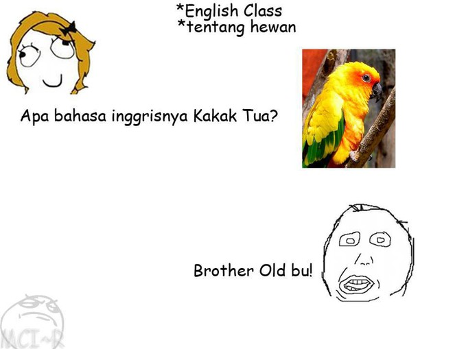 brother old=kakak tua