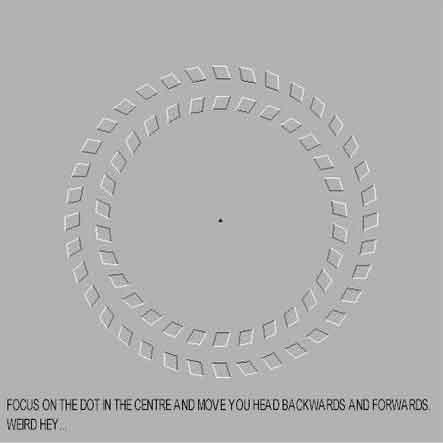 tatap lingkaran ini akan bergerak