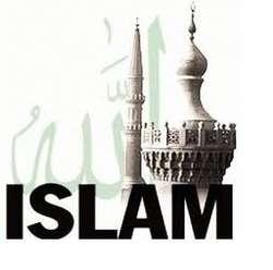 8 orang terkenal yang beragama islam 1.shahrukh khan (aktor) 2.mike tyson (petinju terkenal) 3.muhamad ali (petinju legenda) 4. malcolm x ( kader amerika) 5.mesut ozil,ibrahimovic,frank ribery, anelka (pemain bola terkenal