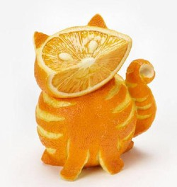 dibalik buah jeruk yg lucu dan imut seprti kucing ini,,terkandung banyak sekali vitamin dan mineral dari alam :D