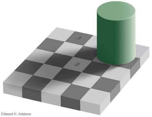 coba perhatikan dengan teliti gambar a dan b sama nga warnanya..banyak orang bilang sama padahal sebenarnya tidak..