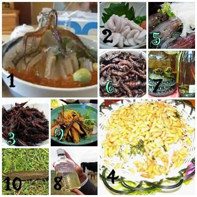 makanan yg terdiri dari 1. gurita segar, 2. sperma ikan, 3. gorengan serangga, 4. gorengan Larva, 5. cumi udang hidup, 6. gorengan serangga 7. minuman keras dengan air uLar, 8. pLasenta babi, 9. ikan yg dijemur bertahun tahun, 10. saLamander