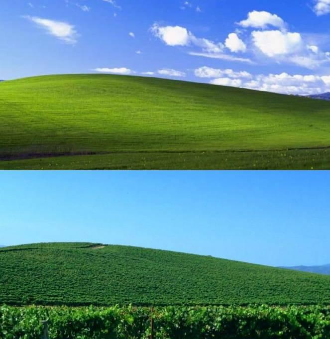 wallpaper windows XP yang sebenarnya. :D