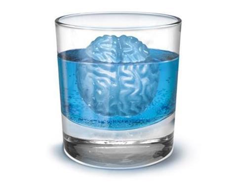 tahu kah kalian apa ini....? ini adalah es batu berbentuk otak..yg kita hidangkan dengan minuman kita ....