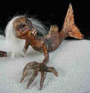 Wow !..... Cba Liat Penampakan Putri Duyung Yg Sdah Mengering Ini !..... Putri Duyung Ini Ditemukan Di Dekat Pesisir Pantai Australia !....... Seorang Anak Yg Bernama Joshua Menemukan Jasat Malang Milik Putri Duyung .