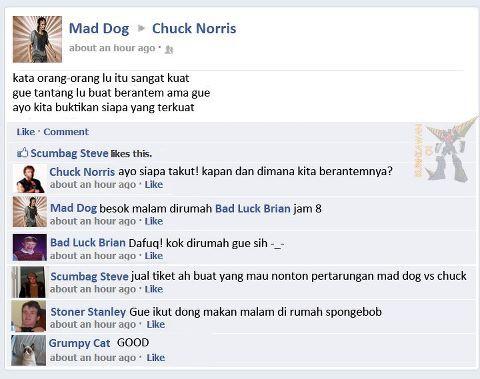 wkwkwk.. wow nya donk Mad Dog vs Chuck