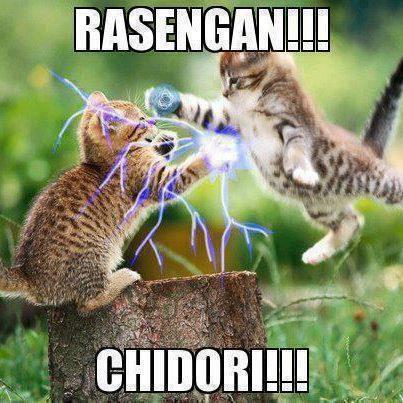 Naruto vs Sasuke (Cat Version) WOW-ny jgn lupa ya..............