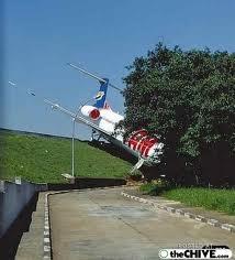pesawat nabrak pohon aneh gak KLIKWOWDULU