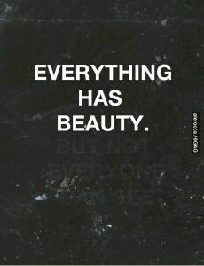 Everything has beauty. But ...
