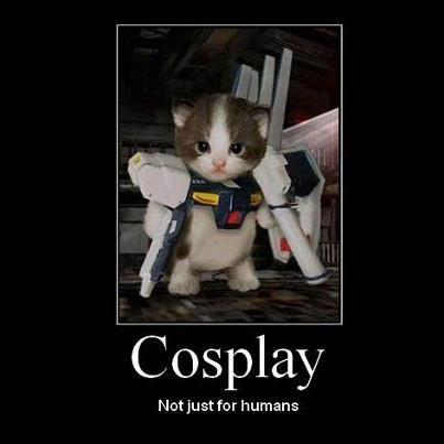 Cosplay Not Just For Humans !! :D wkwkwk kasih Wownya dong
